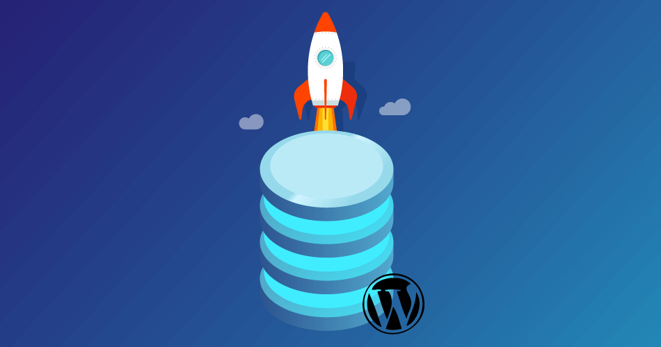 Best WordPress Database Plugin Options to Accelerate the Speed of Your Database