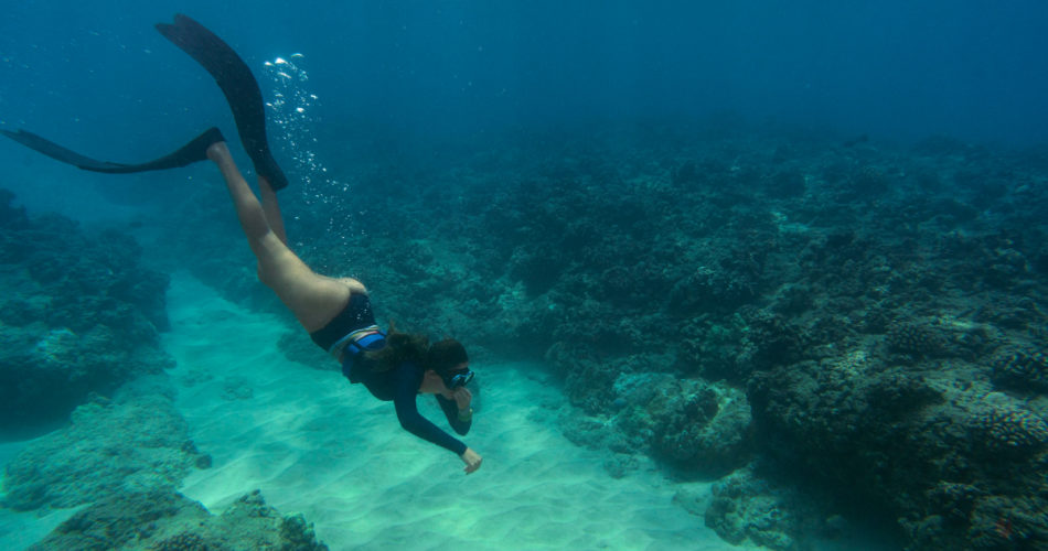 All You Need to Know About Scuba Diving in Sri Lanka